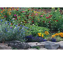 Stone Garden on Cape Breton Island Photographic Print