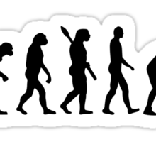 Evolution Wrestling Sticker