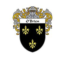 O'Brien Coat of Arms/Family Crest Photographic Print