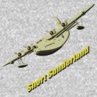 Short Sunderland Flying Boat WWII T-shirt by Dennis Melling