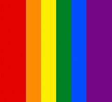 Smartphone Case - Rainbow Flag 1 by Mark Podger