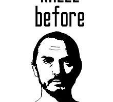 Kneel Before Zod by mymainmandeebo