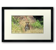 Bang on Looking Straight into my Eyes Framed Print