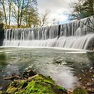 The Weir at Samlesbury Bottoms by Stephen Liptrot