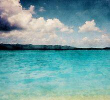 Caribbean British Virgin Islands by Phil Perkins