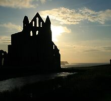 Whitby abbey by TBirdTez