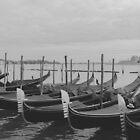 Gondola Row, Venice Italy by Timothy Denehy
