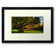 Castle Grounds, Ireland Framed Print
