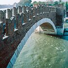 Ponte Scaligero from inside the Castelvecchio Museum 198404190080  by Fred Mitchell