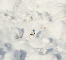 Lego My Popsicle  by joegalt