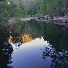 Stillness and Reflection by Liz Worth