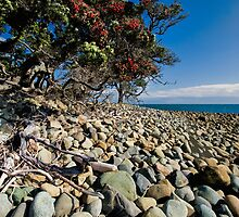 Pohutukawa Rocks by Ken Wright