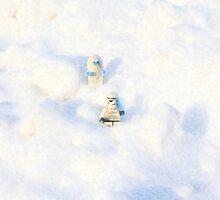 Snow Pop by joegalt