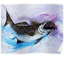 AWESOME Speckled Trout Painting from J. Vincent Scarpace Poster