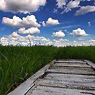 Prairie Portal by Mark Iocchelli