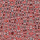 Amoebic Disorder by Erin Davis