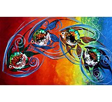 COLORFUL, ABSTRACT FISH !!  FUN, Whimsical, UNIQUE, Original. Photographic Print
