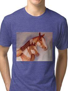 Pastel Pintos Tri-blend T-Shirt