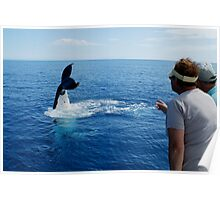 Whale Tail Humans Poster