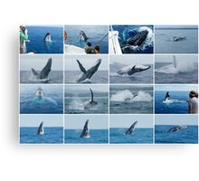 Whales Mixed Collage 1 Canvas Print
