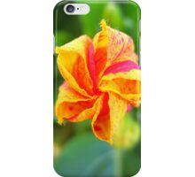 Abuelita's Garden Star Flower iPhone Case/Skin