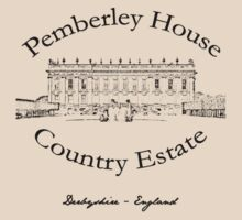 Pemberley House Country Estate by realsuperhero