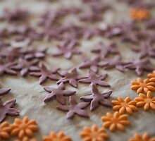 Little flowers .............. by Nina  Matthews Photography