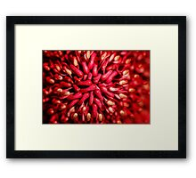 Attention to detail ............... Framed Print