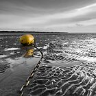Buoy & Ripples by Gary Clark