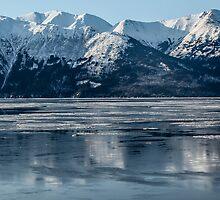 Alaska ............ice lake  by Nina  Matthews Photography