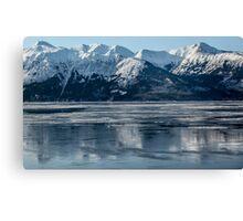 Alaska ............ice lake  Canvas Print
