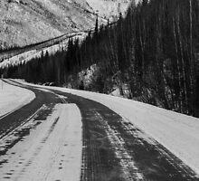 Alaska ............. by Nina  Matthews Photography