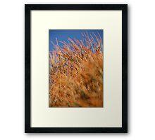 Naturalness Framed Print