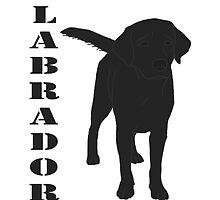 Black lab by ccia