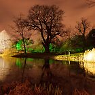 Christmas at Kew Gardens by John Gaffen