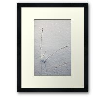 RAW.................. Framed Print