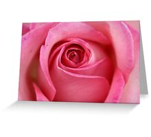 Coeur d'une rose...pretty in any language Greeting Card