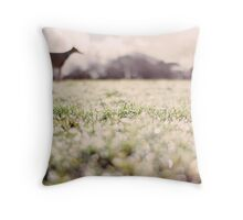 Whippet in field (February) Throw Pillow