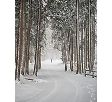 A solitary winter wanderer Photographic Print