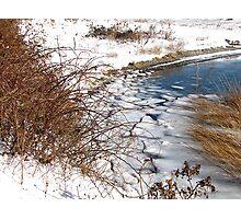 Winter fractals Photographic Print