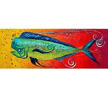 MAHI MAHI, Colorful, FUN, Abstract Fish Art Original Design from J. Vincent, MUST SEE, BEAUTIFUL Photographic Print
