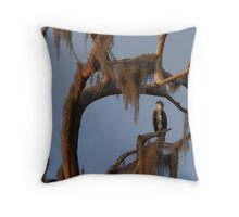 Osprey and Spanish Moss Throw Pillow