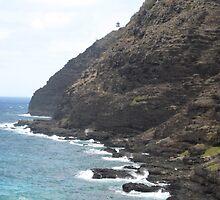 Cliffside Offroading, HI by Nic Antoinette