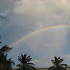 Double Rainbow, St Maarten by Nic Antoinette