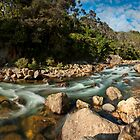 Karangahake Gorge by Ken Wright
