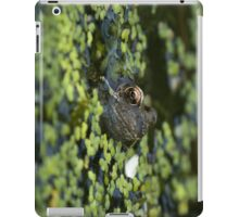 Froggy iPad Cover iPad Case/Skin