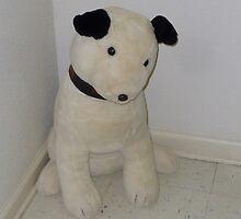 White Dog by WildestArt