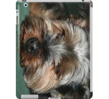 Yorkie iPad Cover iPad Case/Skin