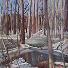 Winter Scene in Rock Creek Park by Marcie Wolf-Hubbard