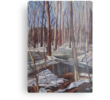 Winter Scene in Rock Creek Park Metal Print